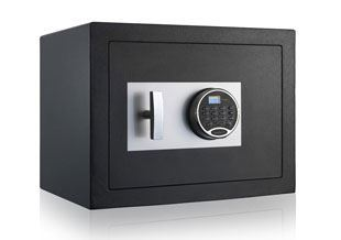 Picture for category Fire and Security Safes